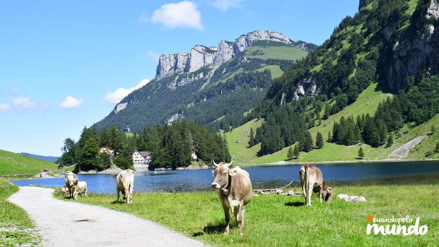 calor_nos_alpes_appenzell12